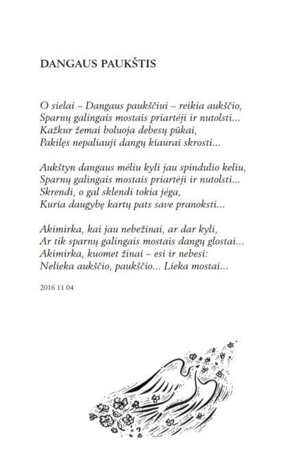 Dangaus paukštis, Ona Rašytė